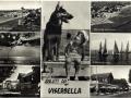oldviserbella-81